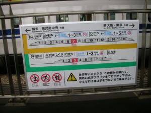 DSCN5604
