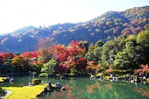 photo credit: Tenryu-ji, Sogenchi Teien (Garden) -2 (November 2008) via photopin (license)