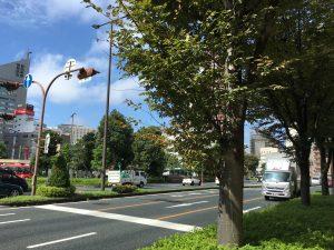 浜松駅前の通り、静かで落ち着いている。